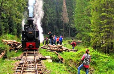 Waldbahn-Viseu_heller